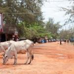 sihanoukville // www.juliadresch.com