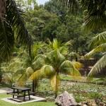 lake gardens // kuala lumpur // www.juliadresch.com